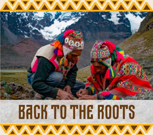 Ver publicaciones de la categoría Back to the roots